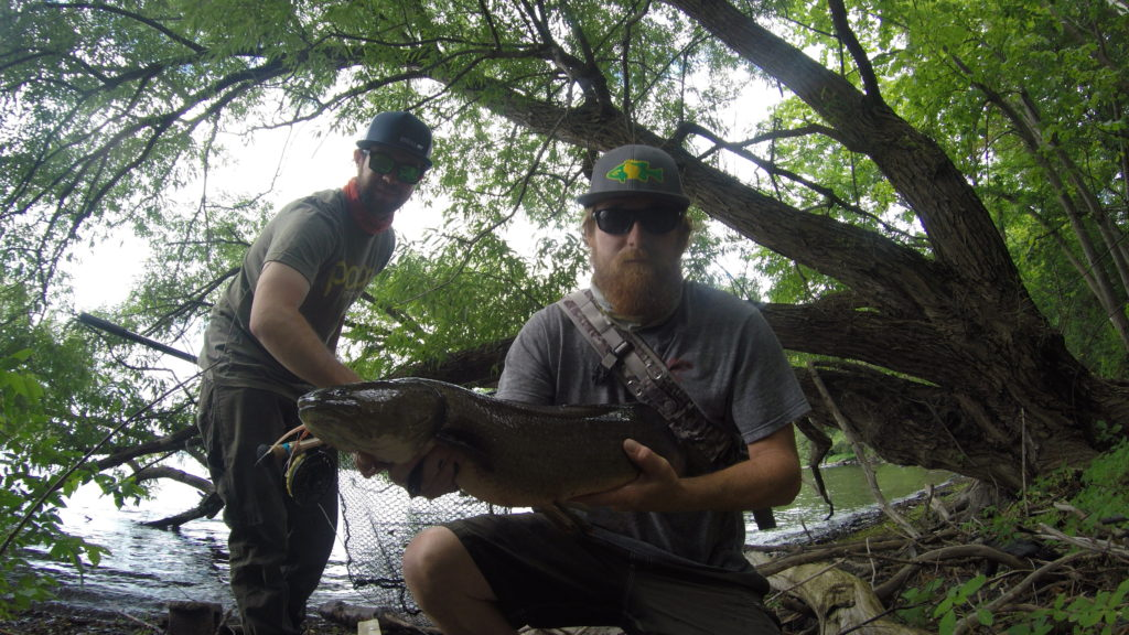 fish, fishing, Bowfin,, Fly fishing, fishing guides