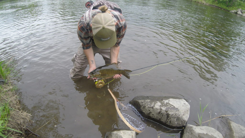 Small Mouth Bass, Fly Fishing, Guided Trips, Vermont New York Fly Fishing Guides, Bass