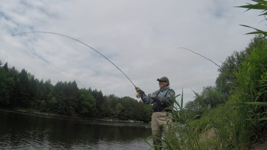 Fly Fishing Vermont, Brown Trout, Guided trips fly fishing vermont new york