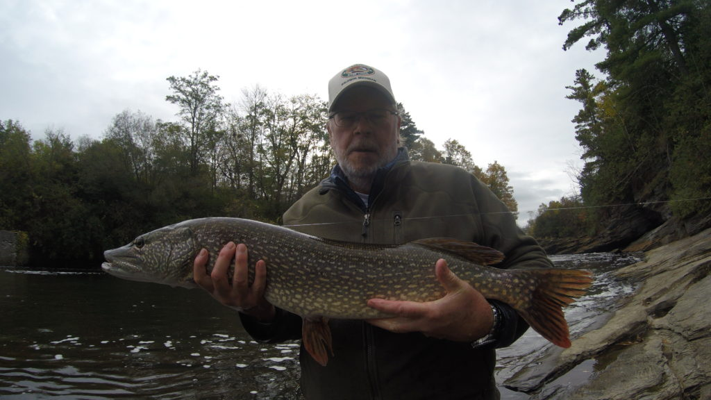 Fish, Pike, Northern Pike, Vermont, New York, Guided Trips